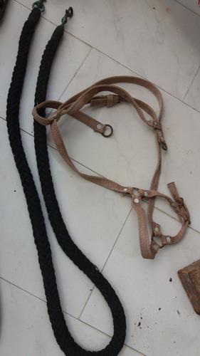 sudaderas y frenos para caballos