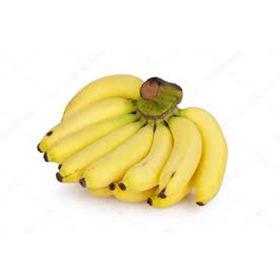 Super Bananas Anã Jardim 2 Mudas Vasos Sítios Casas Pomar Horta Passas Fazendas Apartamentos Doce Sucos Bolos Geleia