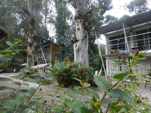 super cómodas en el corazón del bosque p / 2 ,4 y 6 personas