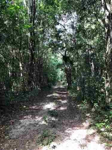 super remate, terreno en venta, ruta de los cenotes, puerto morelos.