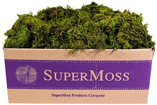 supermoss - sabana para moises mini (roja) verde fresco