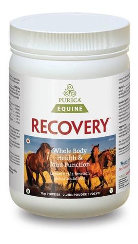 suplemento caballo purica equine recovery eq 1kg + envío