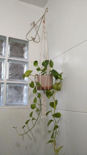 suporte para plantas em macramé