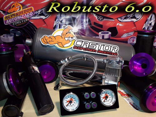 suspension neumatica castor robusto 6.0