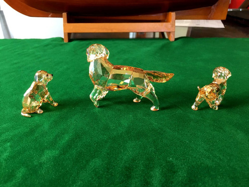 swarovski perros golden retriever
