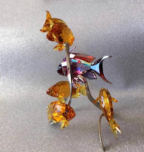 swarovski sea goldies fish topaz peces