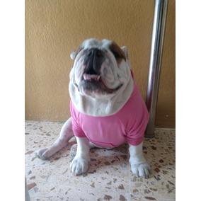 9685c7017206f Sueter Para Perro Bulldog Frances en Mercado Libre México