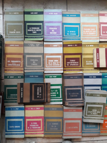 sys lote 38 libros biblioteca del hombre contemporaneo paido