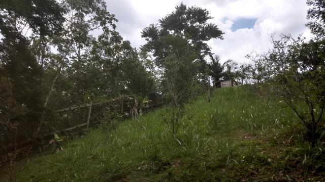 t-1395 terreno recanto da cachoeira l - guararema - sp - 2495