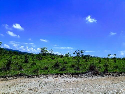 t01 condominio de casas de campo no municipio de guararema