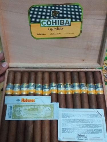 tabacos habanos originales cohiba espléndidos