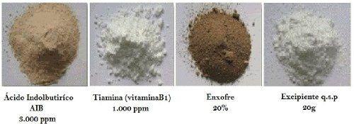 talco enraizador pó ácido indolbutírico 3000 ppm - 20g