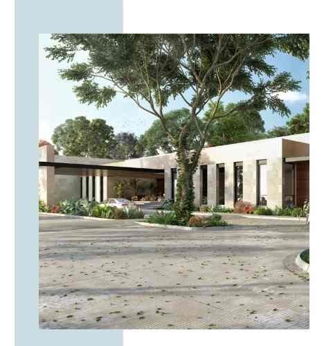 tamara lotes residenciales en mérida, yucatán