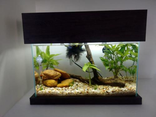 tampa para aquário