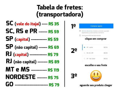 tampão bagagito new fiesta 2 4 portas 2011 a 2019 + símbolo