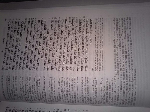 tanaj torah (a.t) hebreo español. israel judaismo cabala