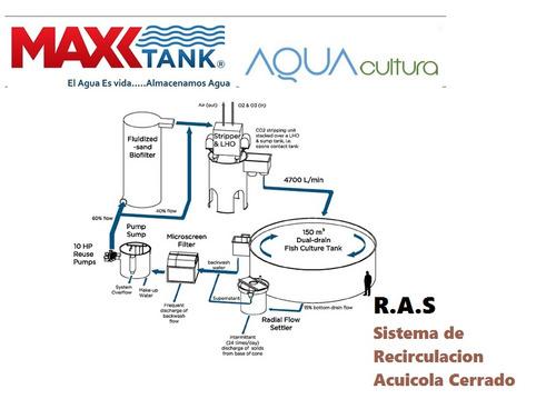 tanques piscicultura s.r.a biofloc tilapia trucha camaron
