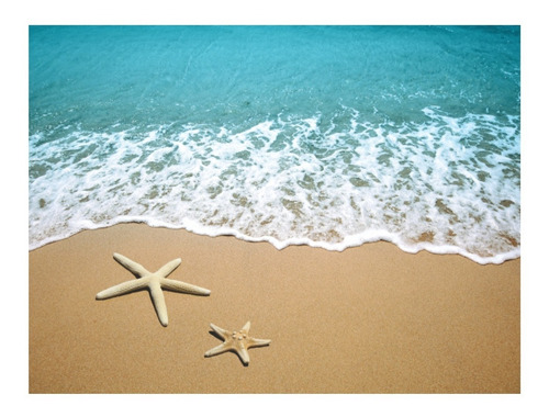 tapete em lona 3,00x1,70mt moana areia da praia 3d