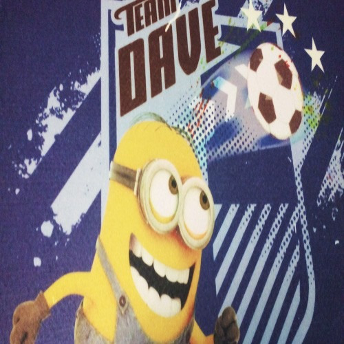 tapete ingreso minion team dave