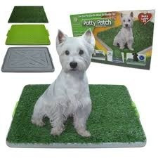tapete sanitario para perro potty patch