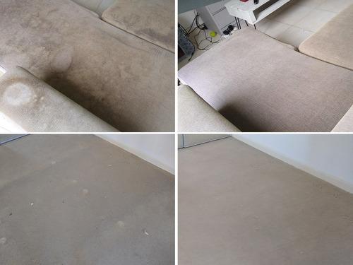tapizados, alfombras limpieza