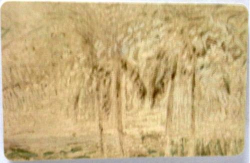 tarjeta cantv usada 2003 cocoteros en la playa serie reverón