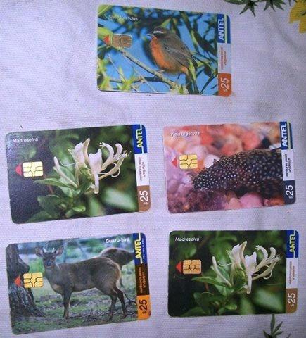 tarjetas telefónicas antel