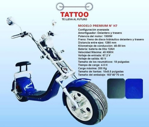 tattoo premium  h7