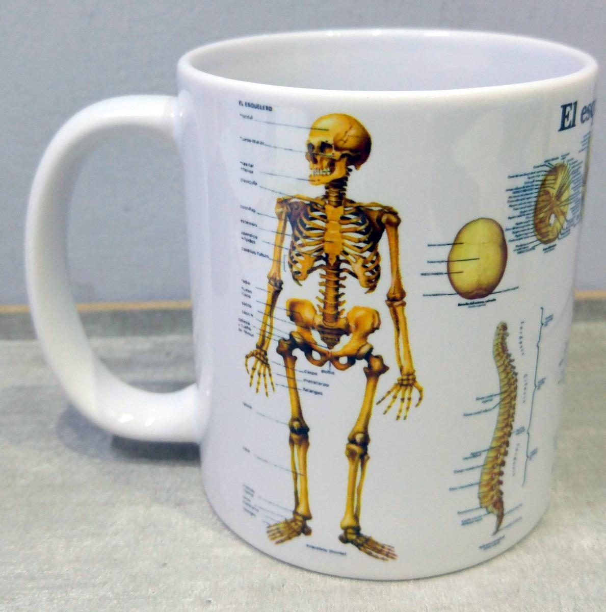 Taza Cerámica Esqueleto Cuerpo Humano Calavera Huesos - $ 199,00 en ...