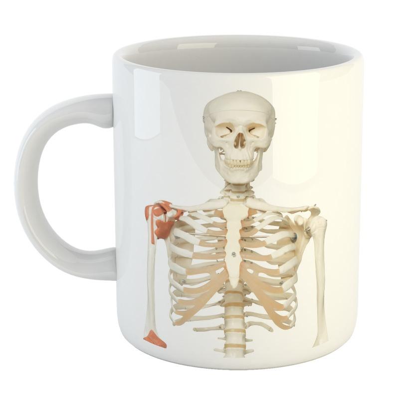 Taza Esqueleto Skull Calavera Cuerpo Humano Huesos Mod12 - $ 249,99 ...