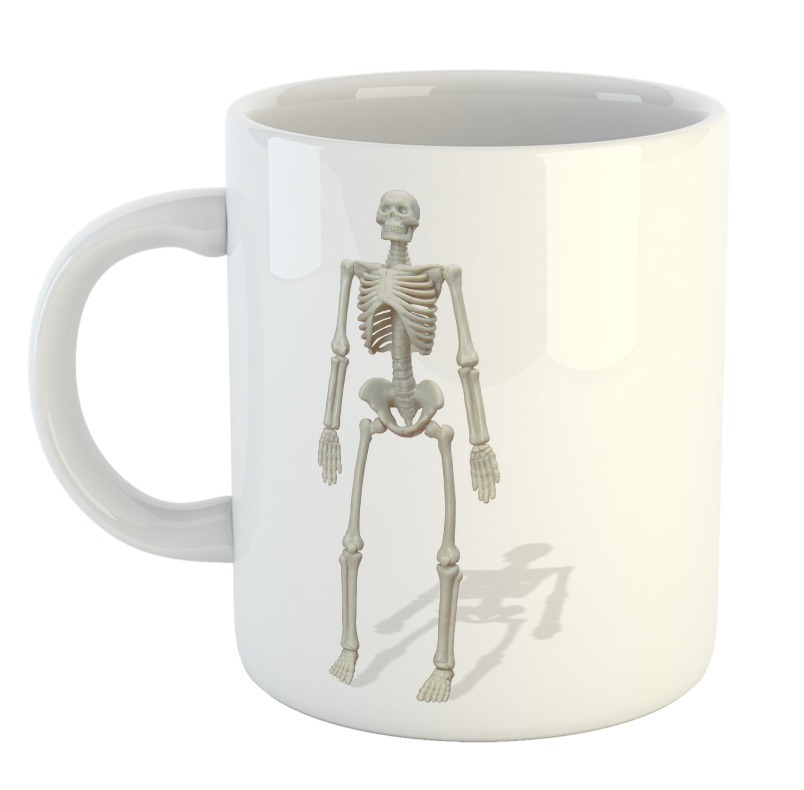 Taza Esqueleto Skull Calavera Cuerpo Humano Huesos Mod13 - $ 249,99 ...