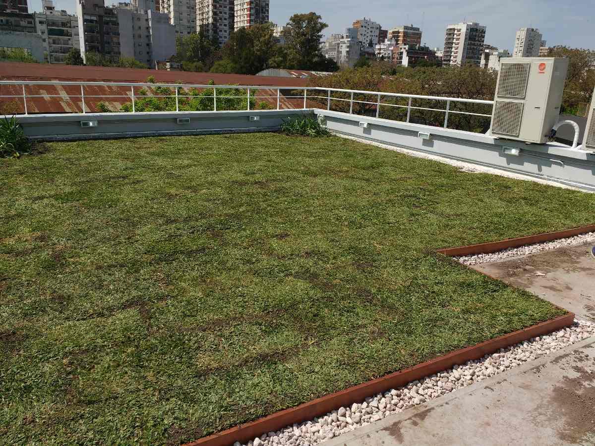 Techo Verde Terraza Verde Azotea Verde X M2 Con Pvc 6 300 00