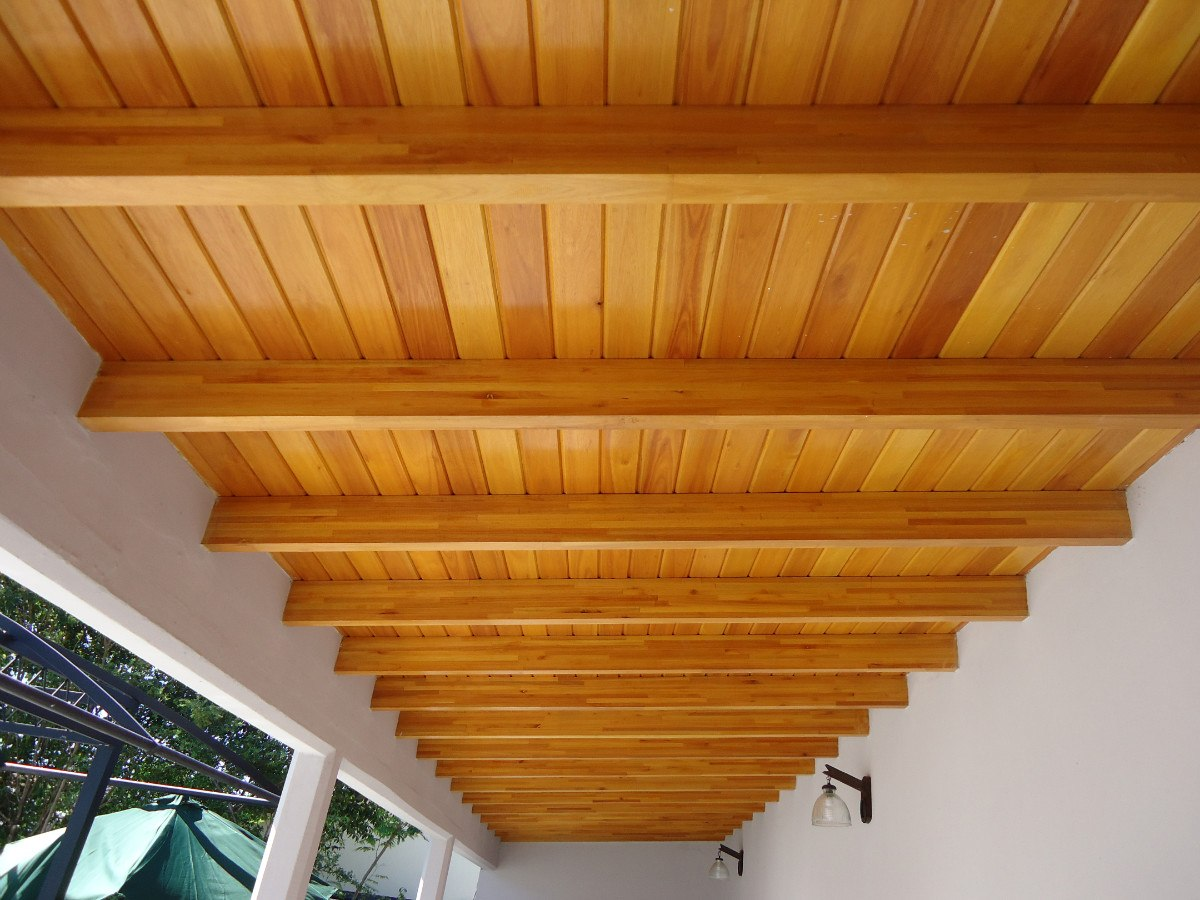 techos de madera machimbres sin nudos grandis