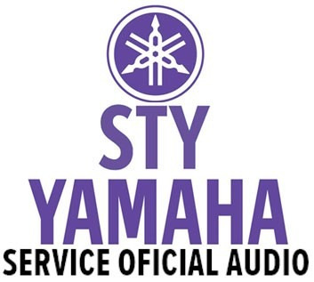 tecnico audio servicio