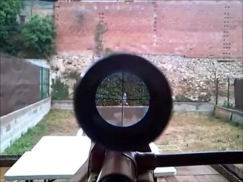 telescopica caza mira