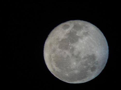 telescopio celestron 21064 astromaster 90 eq refractor vv4