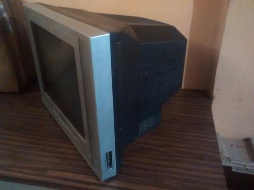 televisión naoki 19