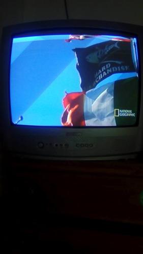 television phlips 21 pulgadas