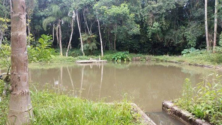 tem lago, trilha ecológica !!!( terrenos 1.000 metros)