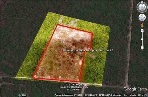 temozon-tixcuytun terreno de 3.1 hectareas sobre avenida