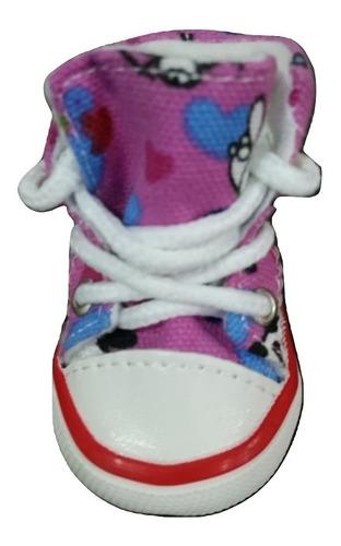 tenis + coleira kit petshop pet cao gato cachorro sapato t p