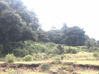tepozotlan, terreno panorámico