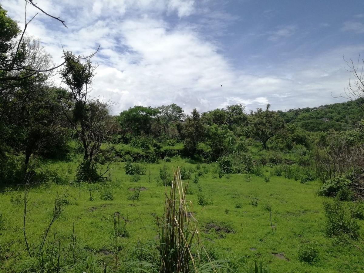 tepoztlan morelos terreno