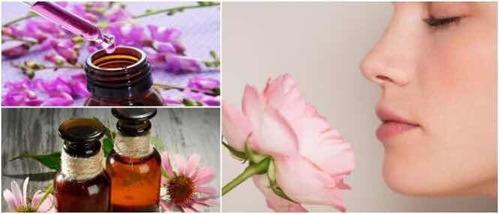 terapia flores de bach, frasco con elixir floral