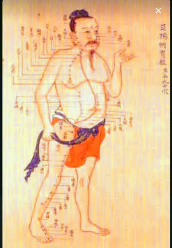 terapia tradicional china y biomagnestismo
