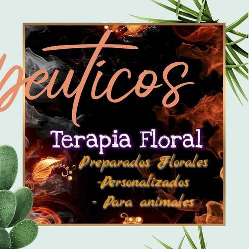 terapias tarot- flores de bach- carta natal astrologia