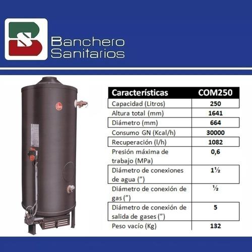 termotanque comercial rheem a gas 250 litros cta