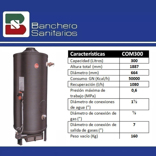 termotanque comercial rheem a gas 300 litros cta