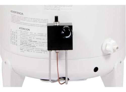 termotanque escorial 80 litros multigas de colgar cuotas