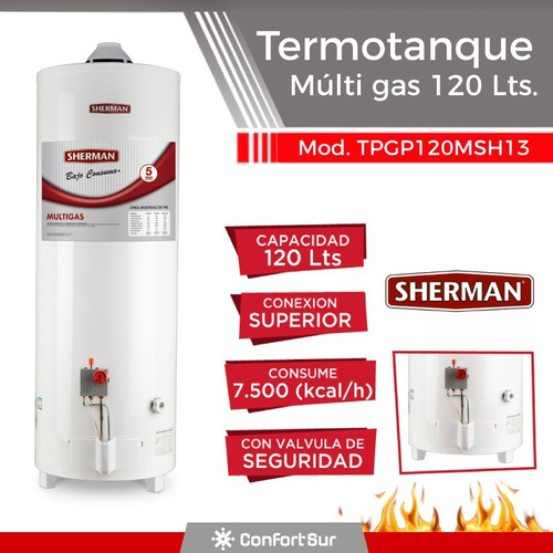 termotanque múltigas sherman 120 litros mas recuperación *4